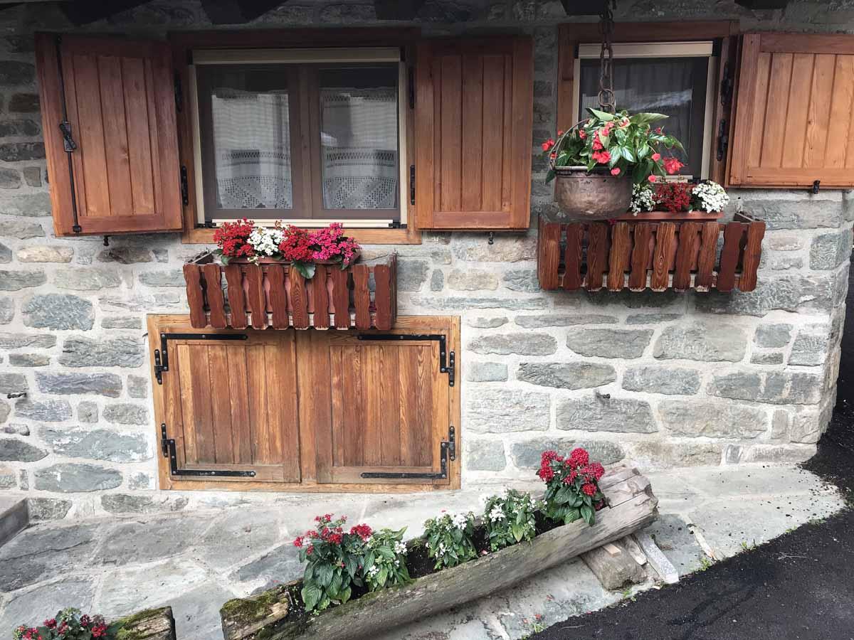 10 cose da fare in Val d'Ayas dettagli fiori